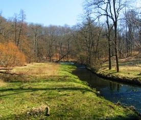 Das Seifersdorfer Tal