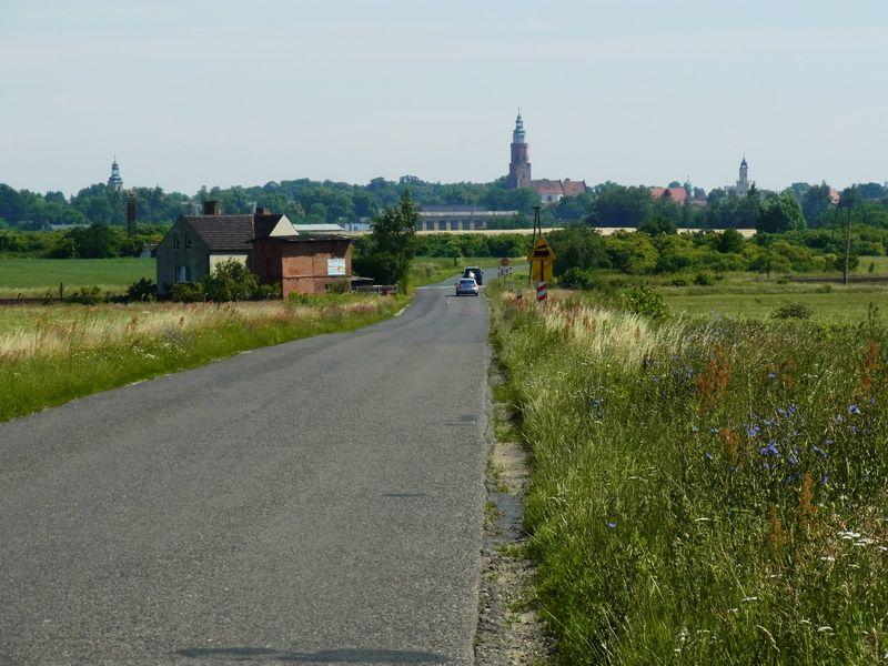 Widok z drogi na Wschowę